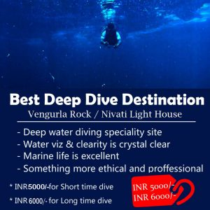 Best Deep Dive Destination
